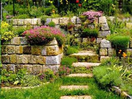 Рокарий - каменистый сад