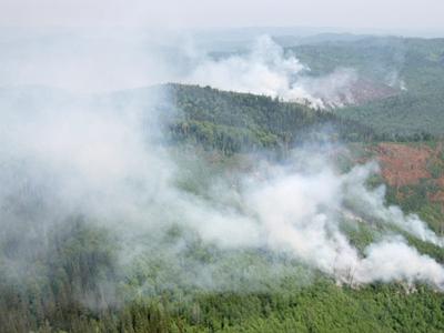 В Красноярском крае из-за лесных пожаров введен режим ЧС
