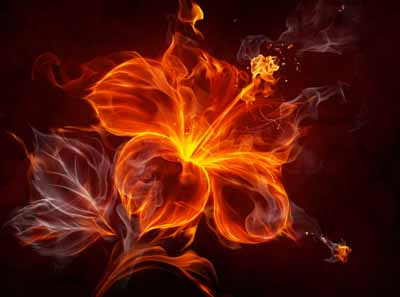 6 интересных фактов об огне
